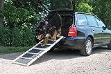 Hunderampe Extra Breit Komfort Rasenbelag klappbar 80x50 / 160x50 cm bis 85 kg
